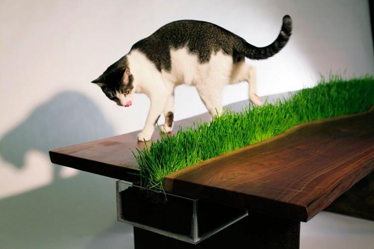 25 id es pour agr menter le quotidien de tous les chats for Meuble avec cachette